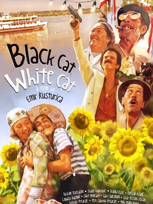 black cat white cat full movie online free