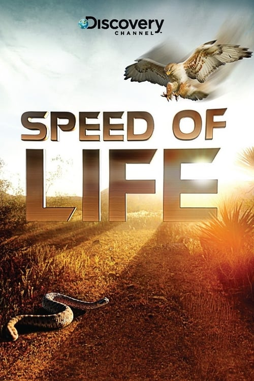 Speed of Life (2010)