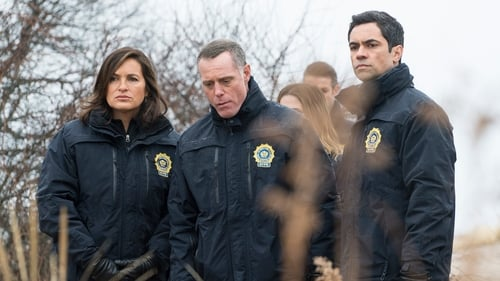 Law & Order: Special Victims Unit: Season 16 – Episode Daydream Believer (3)