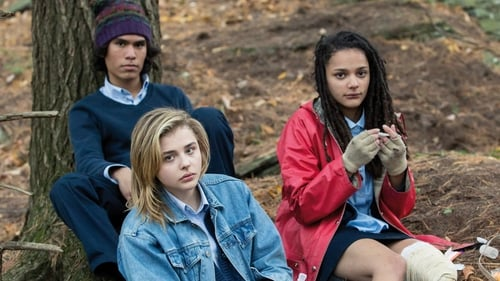 The Miseducation of Cameron Post I recommend it