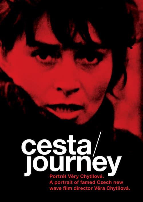 Journey: A portrait of Famed Czech New Wave Film Director Vera Chytilová (2004)