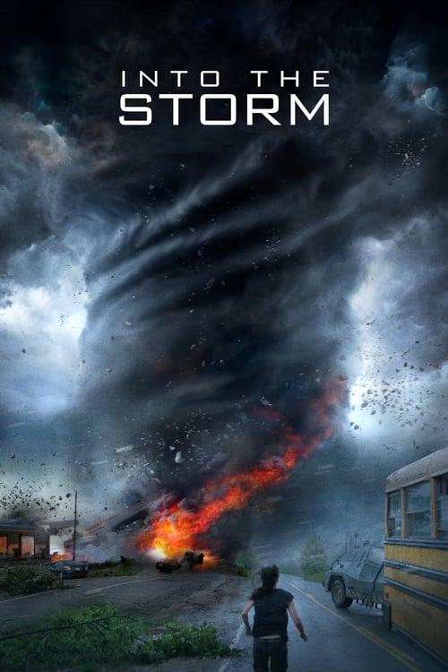 Into The Storm - Poster