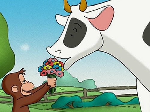 Curious George 2006 720p Webdl: Season 1 – Episode Keep Out Cows