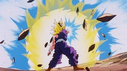 A Luta Terminou... Obrigado Goku!