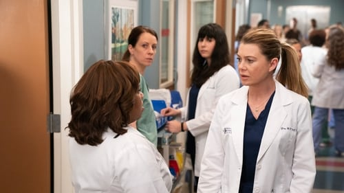Grey's Anatomy - Season 15 - Episode 19: Silent All These Years