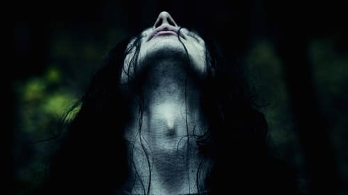 Assistir Lords of Chaos Online