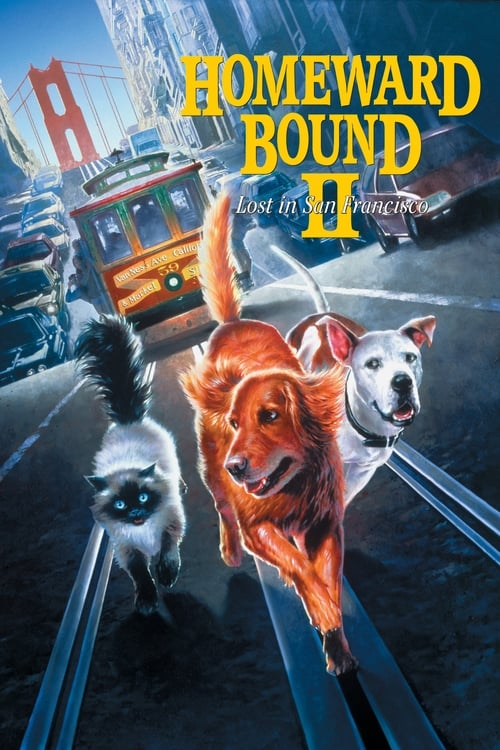 Download Homeward Bound II: Lost in San Francisco (1996) Full Movie