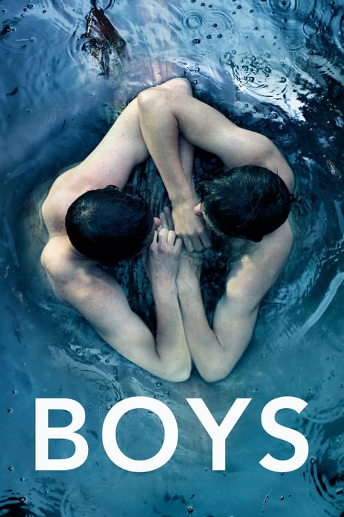 Boys 2014 - BluRay 720p   1080p / Dual Áudio 5.1 – Download