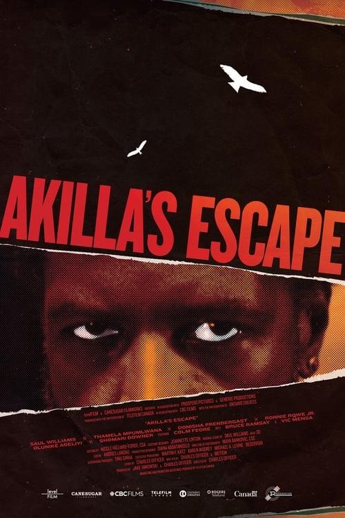 Akilla's Escape Poster