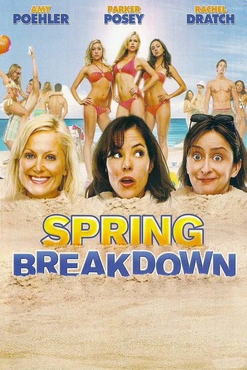 Regarder Le Film Spring Breakdown Entièrement Doublé