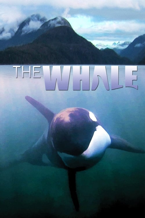 The Whale (2011)