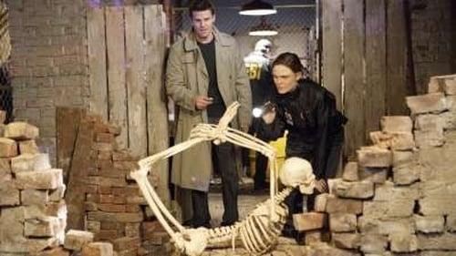 Bones: Season 3 – Episod The Verdict in the Story