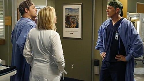 Grey's Anatomy - Season 10 - Episode 18: You Be Illin'