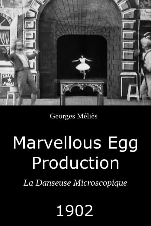 Marvellous Egg Production