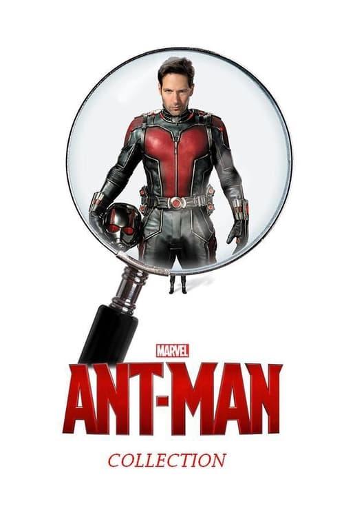 Ant Man Stream English