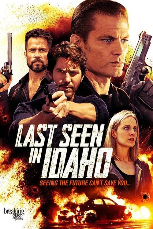 Постер фильма Разыскивается в Айдахо
