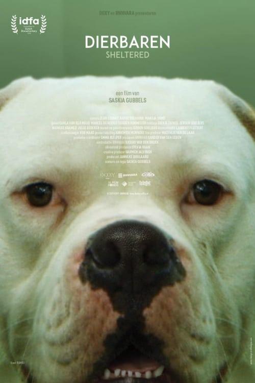 Watch Sheltered Putlocker Movie Online