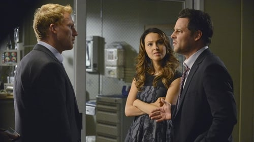 Grey's Anatomy - Season 10 - Episode 13: Take It Back