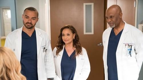 Grey's Anatomy - Season 14 - Episode 16: Caught Somewhere in Time