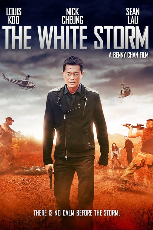 The White Storm (2013) Poster