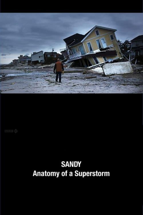 Assistir Filme Sandy: Anatomy of a Superstorm Gratuitamente Em Português