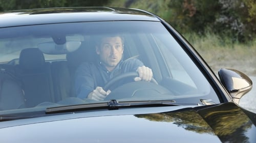 Grey's Anatomy - Season 11 - Episode 21: How to Save a Life