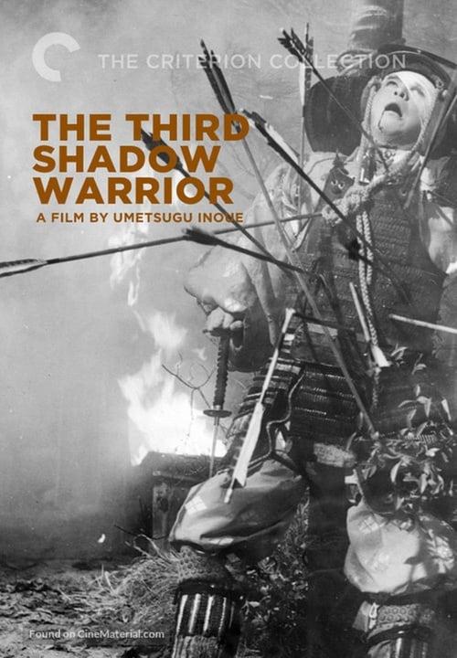 The Third Shadow Warrior