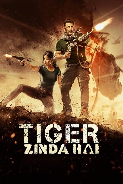 Film Tiger Zinda Hai De Bonne Qualité Gratuitement