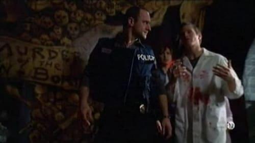 Law & Order: Special Victims Unit: Season 8 – Episode Sin