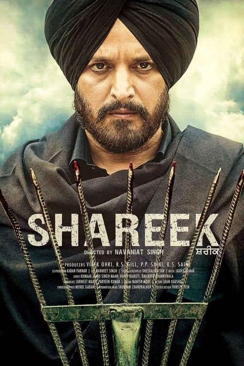Download Shareek (2015) Punjabi Movie HDRip 720p [1GB]