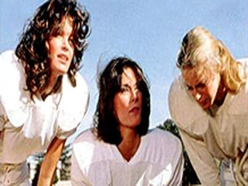 Charlie's Angels: Season 2 – Épisode Angels in the Backfield