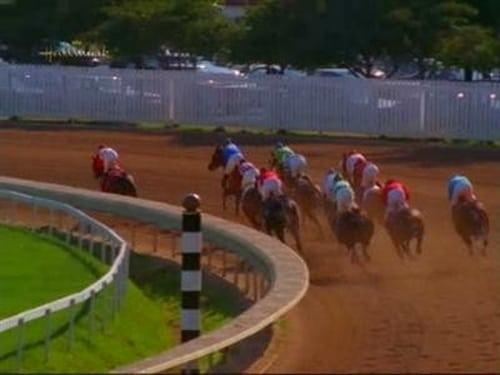 Early Edition 1998 Bluray 720p: Season 3 – Episode A Horse Is a Horse