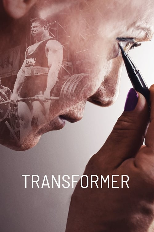 Largescale poster for Transformer