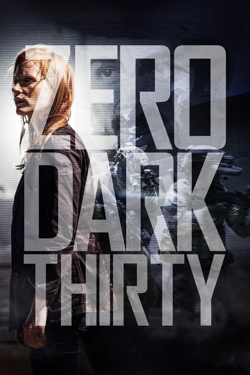 Largescale poster for Zero Dark Thirty