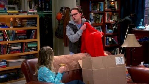 The Big Bang Theory - Season 7 - Episode 8: The Itchy Brain Simulation