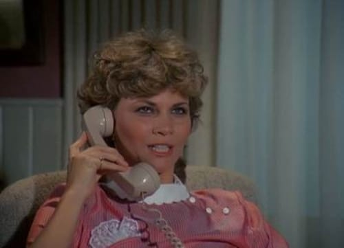 The Fall Guy 1982 720p Retail: Season 2 – Episode Bail and Bond