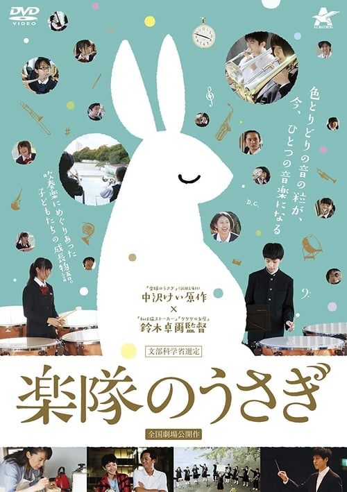 A Band Rabbit and a Boy (2013) Poster