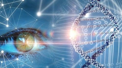 The Gene Code