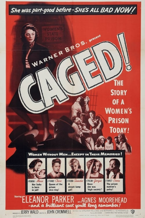 Watch Caged (1950) Best Quality Movie