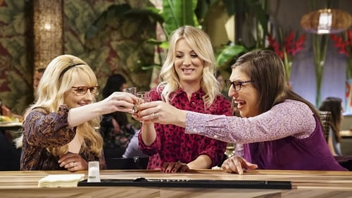 The Big Bang Theory - Season 11 - Episode 20: The Reclusive Potential