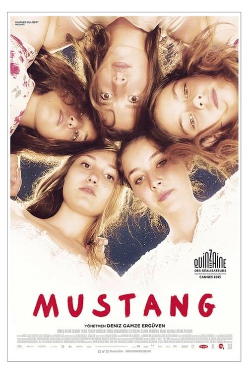 Mustang ( Mustang )