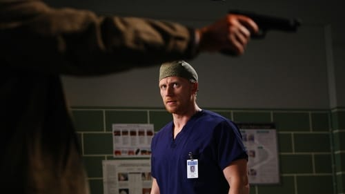 Grey's Anatomy: Season 6 – Episode Death and All His Friends