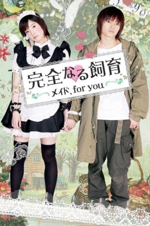 Perfect Education: A Maid for You