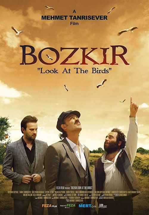 "Bozkir ""Look at the Birds"""