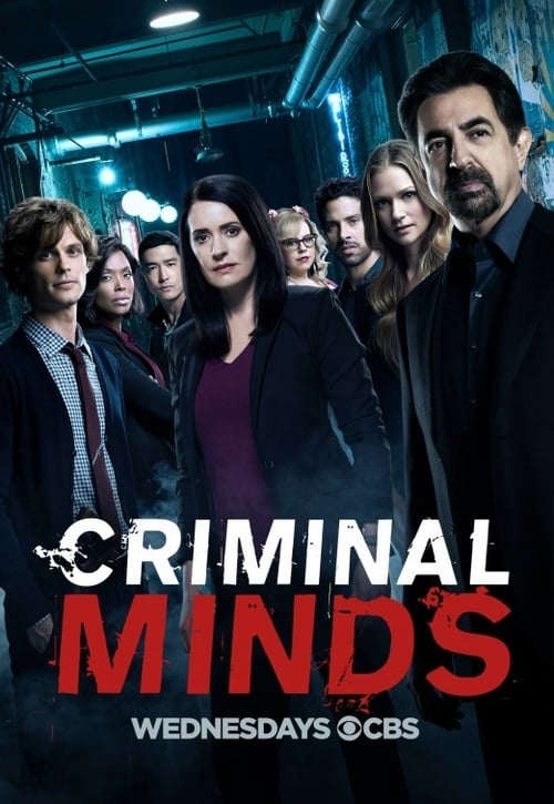 Criminal Minds: Specials