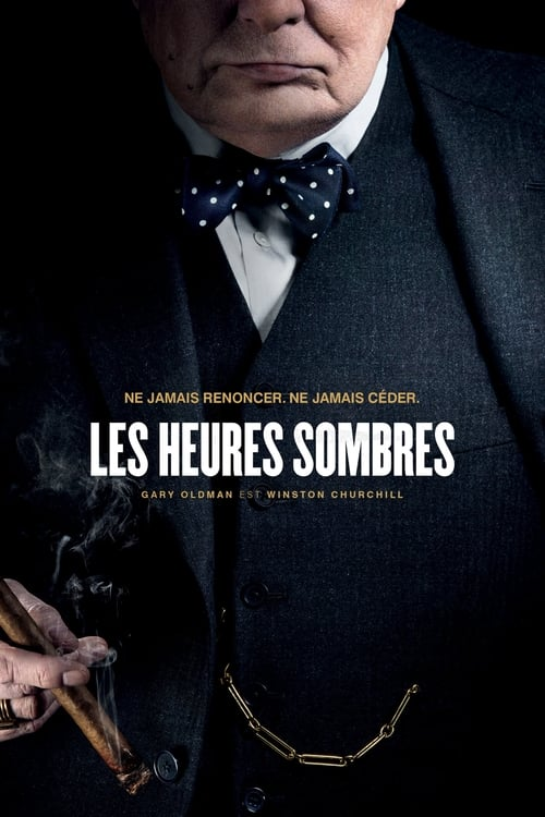 [FR] Les heures sombres (2017) streaming vf