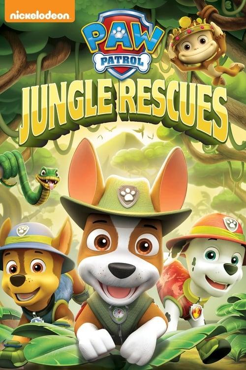 Paw Patrol: Jungle Rescues (2018) — The Movie Database (TMDb)