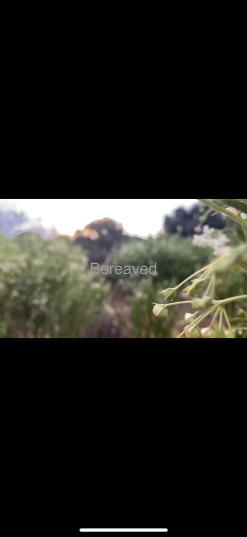 Bereaved Online HBO 2017 Watch