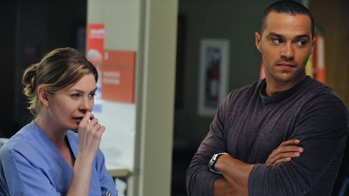 Grey's Anatomy - Season 6 - Episode 16: Perfect Little Accident