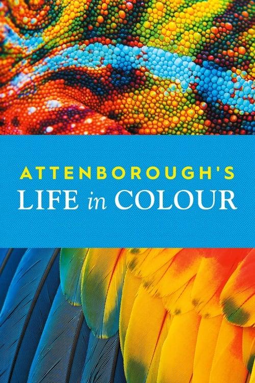 Das Leben in Farbe mit David Attenborough - Poster